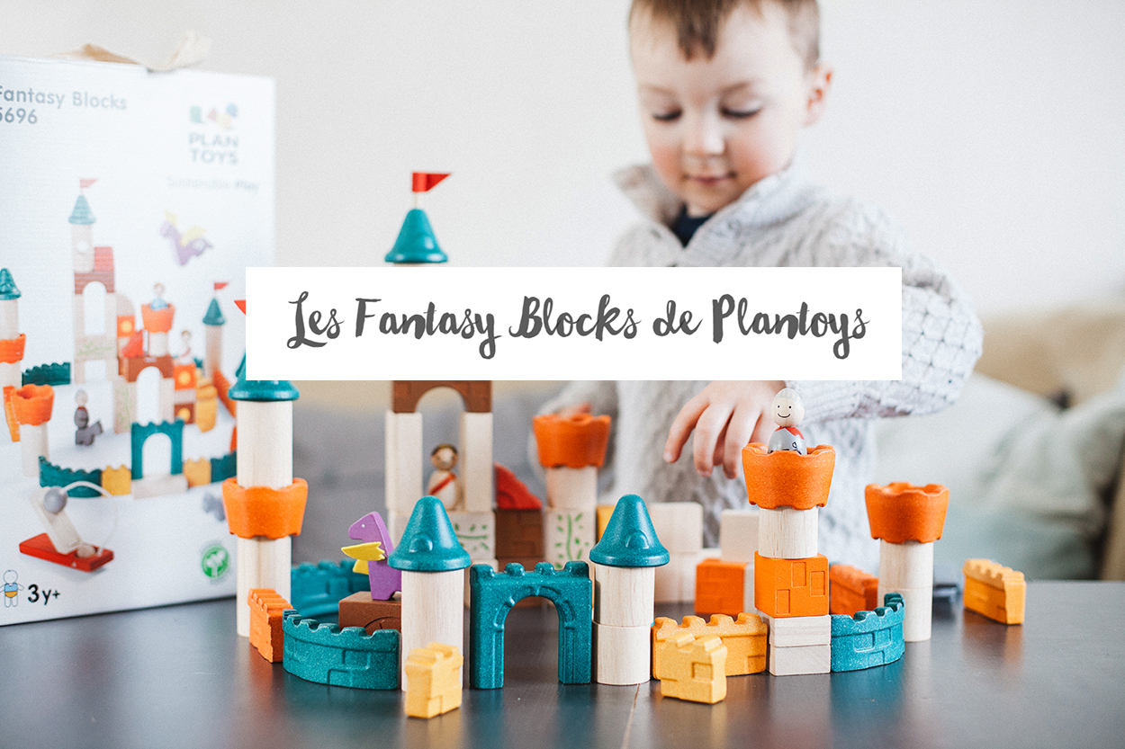Les Fantasy Blocks de Plantoys