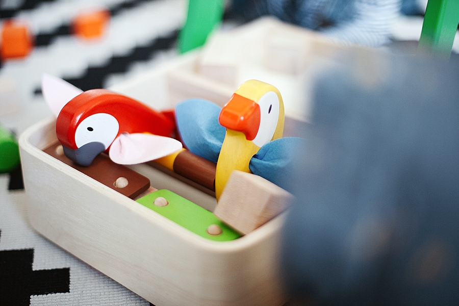 Bird walker Plan toys