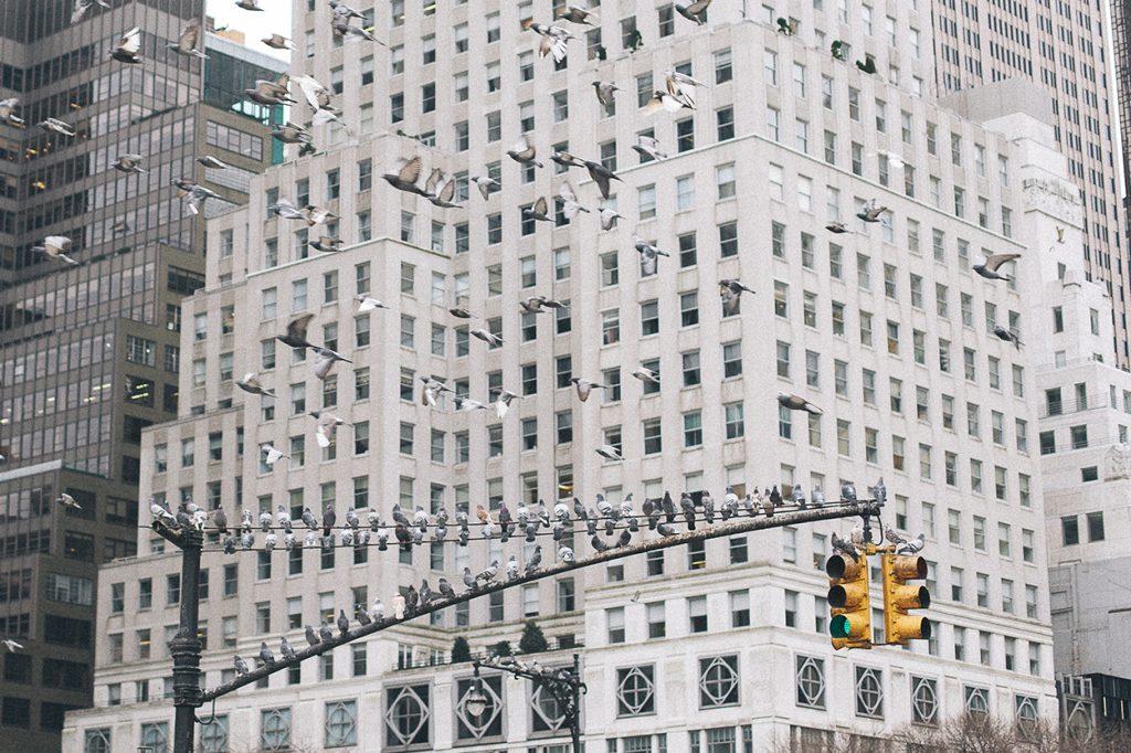 New York Manhattan Rockfeller