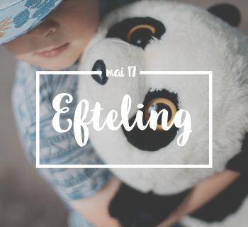 Efteling – M A G I C !  [video]