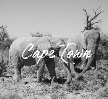 Cape Town – Day six #Mysterytravel