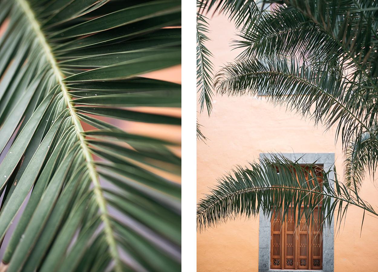 Gran Canaria ; Grande Canarie ; Las Palmas