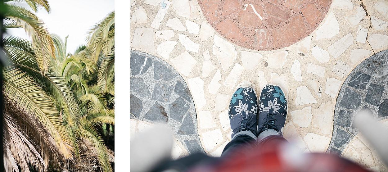 Gran Canaria ; Grande Canarie ; Arucas