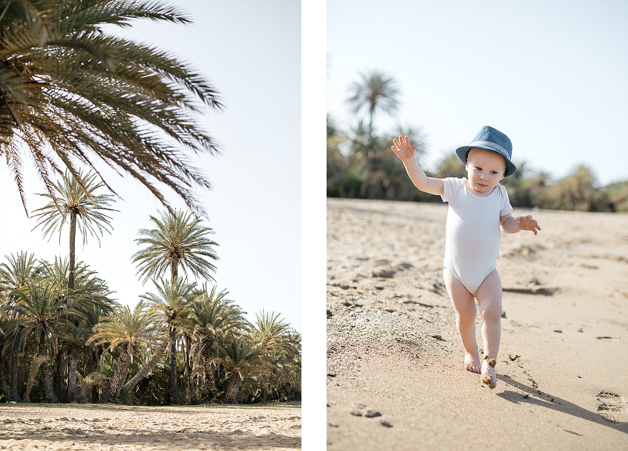 Palmeraie Vai plage Crète Lassithi Palm beach
