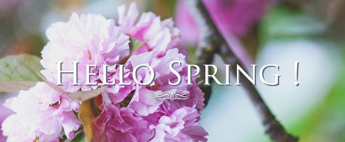 Hello Spring !