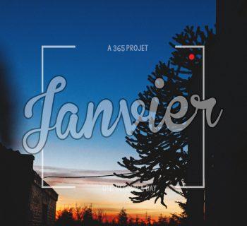 Projet 365 # Janvier