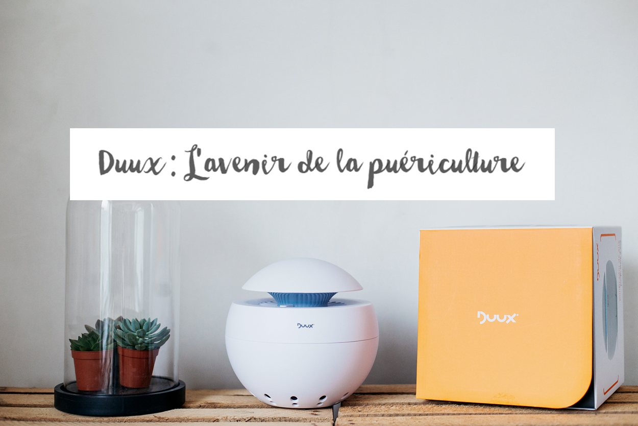 Un air plus pure avec Duux