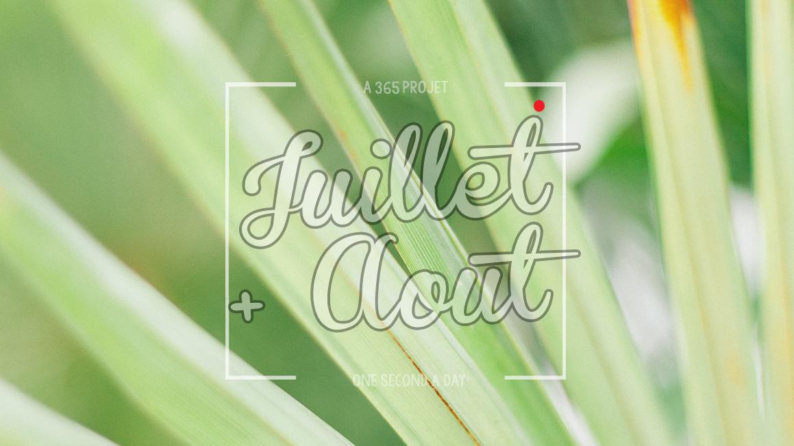 PROJET 365 # JUILLET + AOUT 2016
