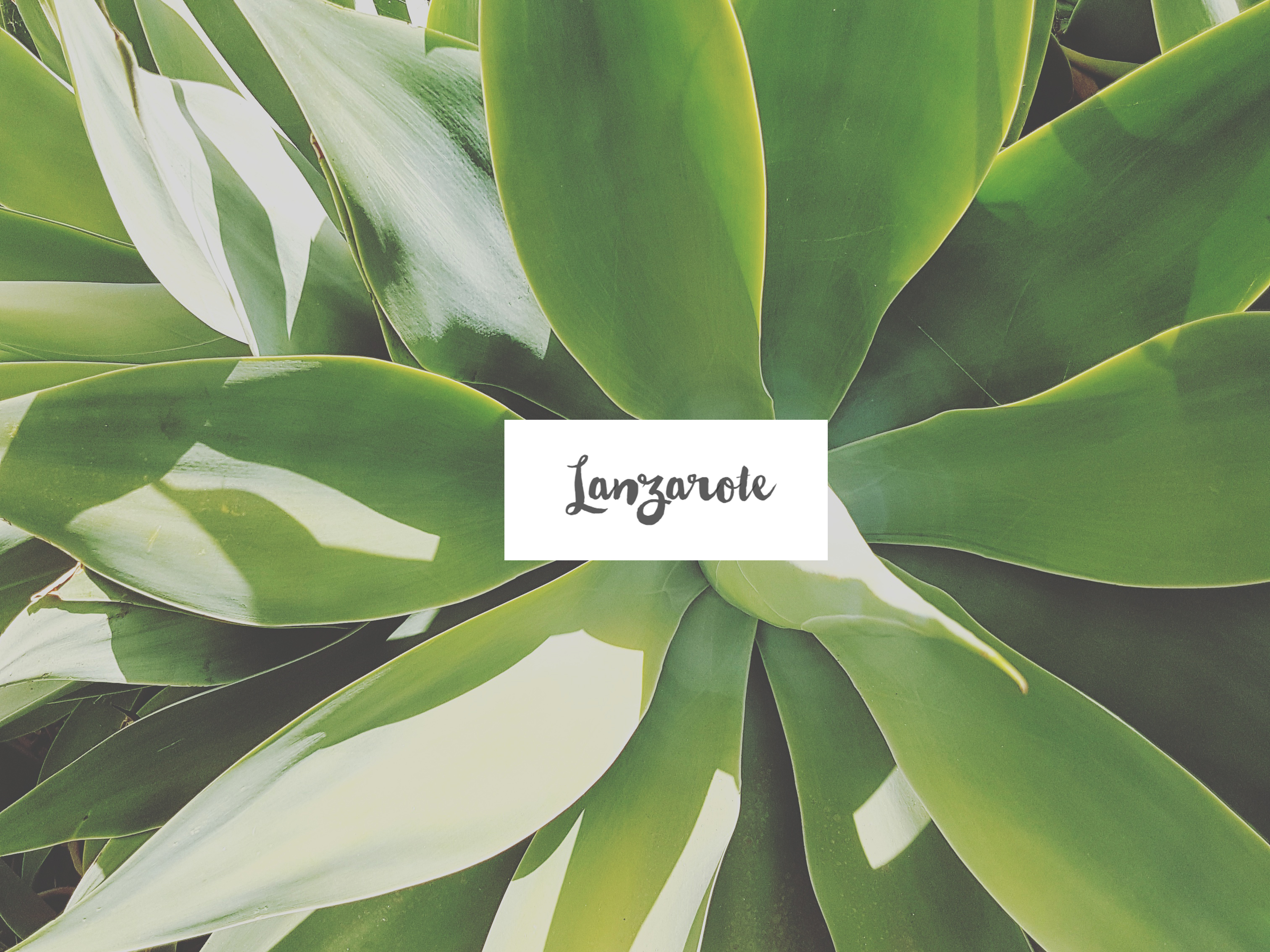 Lanzarote #Instagram