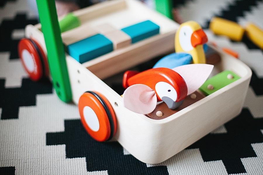 Bird walker Plan toys