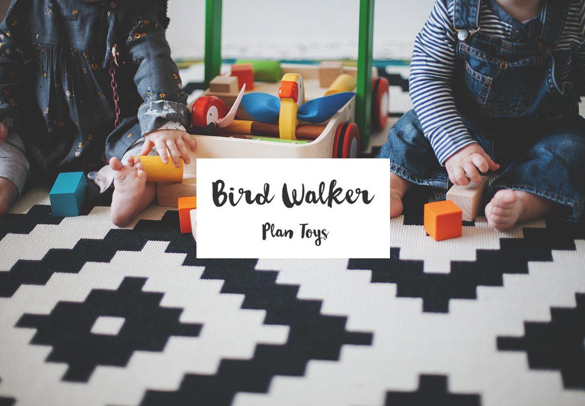 Bird walker #Plan Toys