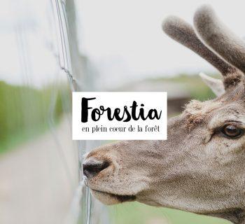 A la découverte du parc Forestia