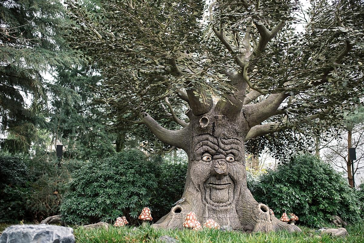 Efteling hiver Sprookjesbos bois des contes arbre