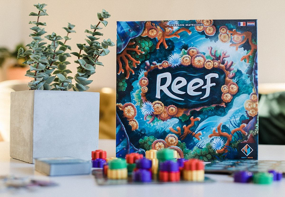 Reef, l'Azul des fonds marins